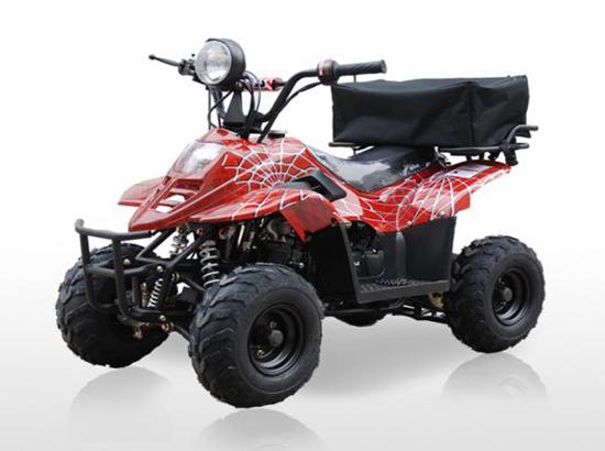 ATV SPIDER 110