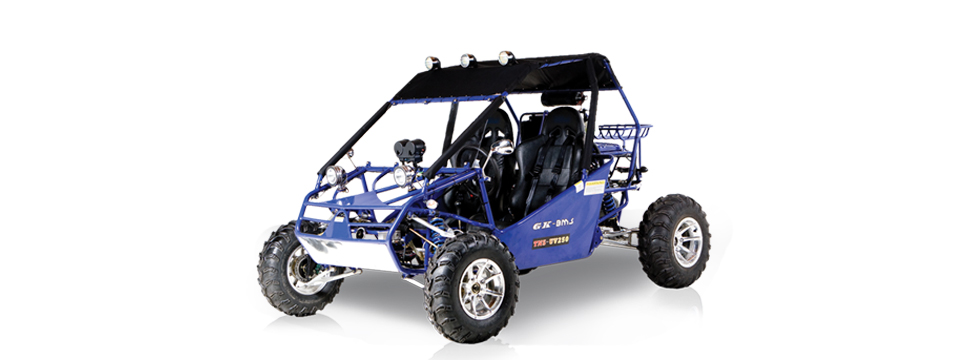 POWER BUGGY 300