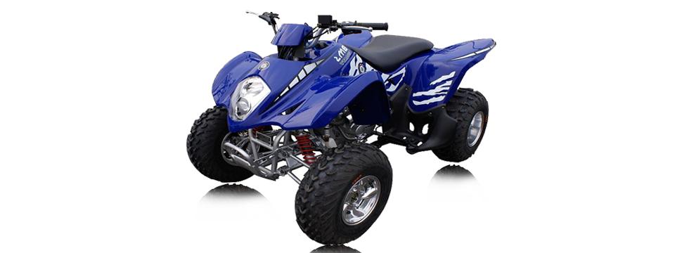 ATV SPORT 300