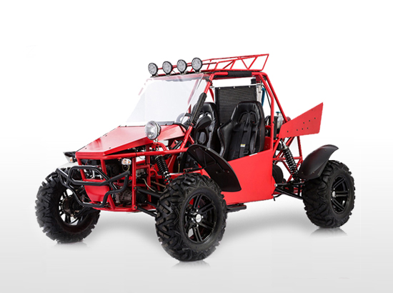 V-TWIN BUGGY 800-2S