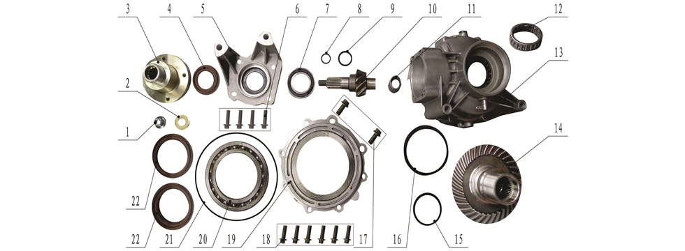 F19 Rear Differential